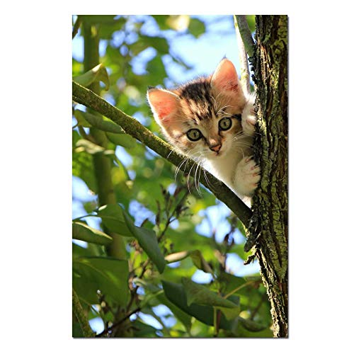 Best Oil Paintings Canvas Prints Cat Trees - Animal - Oil Painting Reproduction On