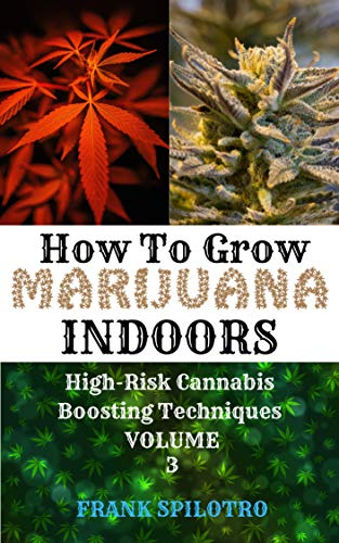 HOW TO GROW MARIJUANA INDOORS: High-Risk Cannabis Boosting Techniques