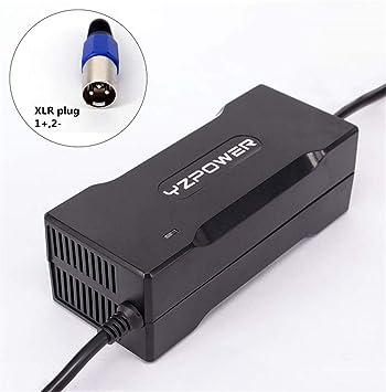 Cargador de batería de la Ion de Litio DE 54.6 V 2 A 13S Cargador para el Scooter eléctrico de vehículo de Coche de Herramientas con la Toma de XLR