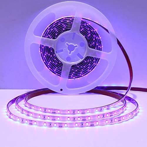 Ultraviolet Led Rope Light in US - 4