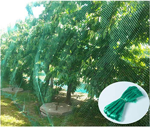 - CandyHome Green Anti Bird Protection Net Mesh Garden Plant Netting Protect Seedlings Plants Flowers Fruit Trees Vegetables from Rodents Birds Deer Reusable Fencing (13Ft x 33Ft)
