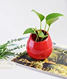 (US) JustNile Pair of Stylish Oval-shaped Hanging Smooth Red Ceramic 3.5 Inch Plant and Herb Holder Pots For Living Rooms, Kitchens, Patios, Balconies and More; Indoor & Outdoor use