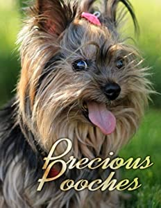 Precious Pooches (Dogs Picture Book) (Volume 1)