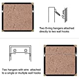 100 Pack Small D-Ring Steel Picture Hangers with