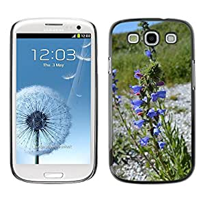 Hot Style Cell Phone PC Hard Case Cover // M00309782 Plant Flower Blue Nature Bloom // Samsung Galaxy S3 S III SIII i9300