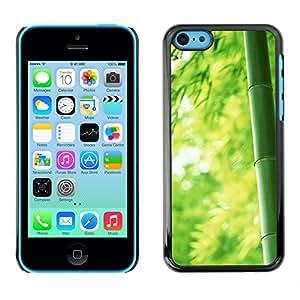 Paccase / SLIM PC / Aliminium Casa Carcasa Funda Case Cover para - Bamboo Japan Green Nature Forest - Apple Iphone 5C