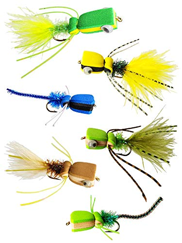 Bass & Panfish Popper Assortment - 6 Flies with Fly Cup (Best Bluegill Fly Patterns)