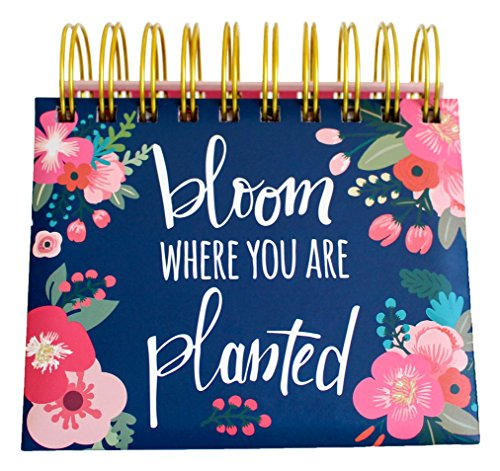 "bloom daily planners Undated Perpetual Desk Easel / Inspirational Standing Flip Calendar - (5.25"" x 5.5"")"