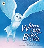 White Owl, Barn Owl (Nature Storybooks)