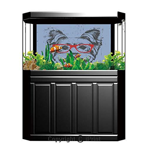 Blue Wallpaper Sticker Background Decoration,Yorkie,Yorkshire Terrier Portrait Red Nerd Glasses Tainted Backdrop Animal,Pale Blue Grey Vermilion,Artistic Portrait Photo Studio Props Video Drape Wallpa