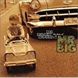 BIG,BIGGER,BIGGEST! The Best Of MR.BIG
