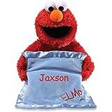 Personalized Peek A Boo Plush Toy (Peek A Boo Elmo)