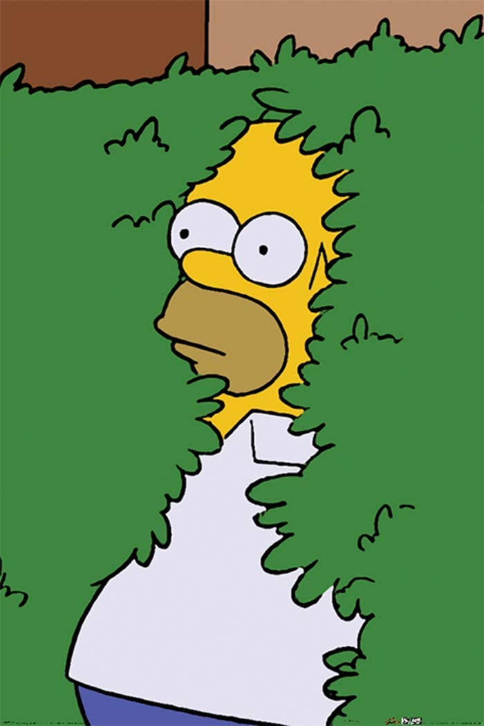 The Simpsons - TV Show Poster (Homer in Bush) (Size: 24 x 36 inches)