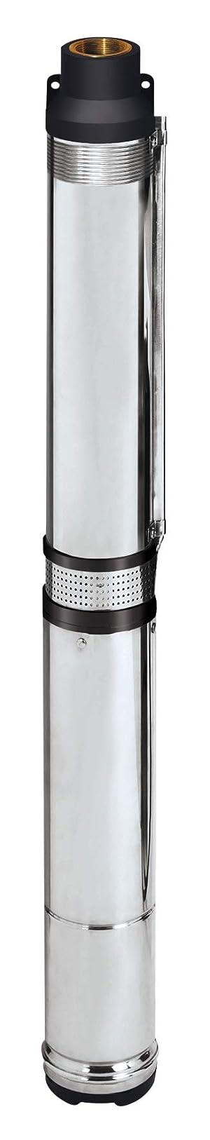 Einhell GC-DW 1300 N - Bomba de agua de profundidad para pozos (1300W, capacidad de 5.000l/h, profundidad max. de 20m, 2 ojales de suspensión, altura de presión 65 m, sistema de impulsor de 10 etapas