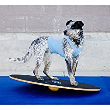 "FitPAWS 20"" Wobble Board for Dog Fitness and Agility"