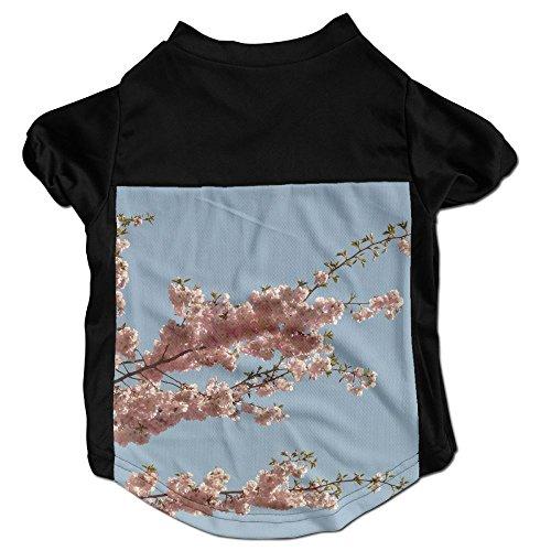 Richard Lyons Fashion Sleeveless Pet Supplies Dog Cat Clothes Blooming Cherry Blossom Blue Ornamental Pink Ornamental Sakura Sakura Plum Blossoms Sky Blossom Pet Apparel Clothing S Black