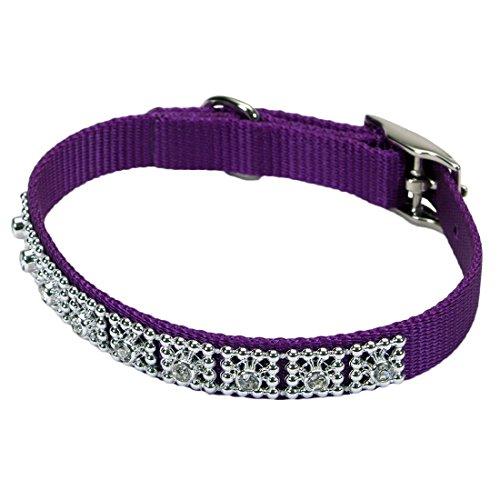 Coastal Pet Products DCP420114PUR Nylon Jeweled Dog Collar, 14-Inch, Purple (Coastal Nylon Jewel Collar)