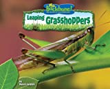 Leaping Grasshoppers, Meish Goldish, 1597165867