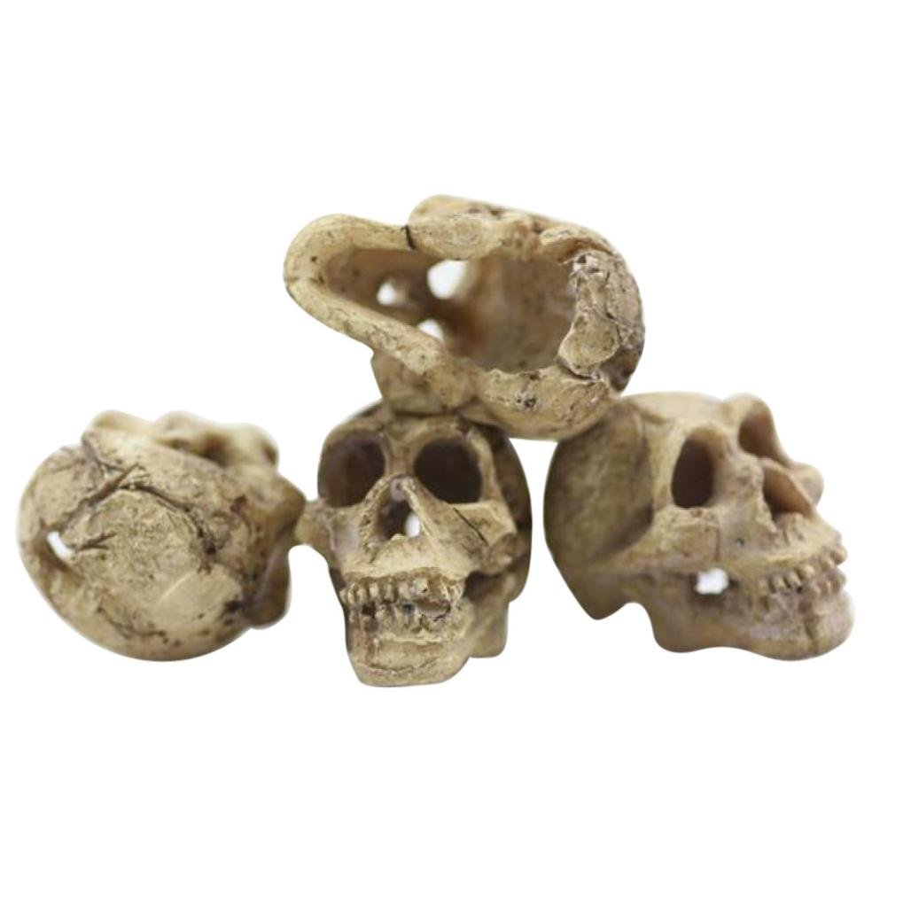 Sensail Ornement d'Aquarium, Artificielle Crâne pour Aquarium Aquatique