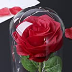 Red-Silk-Rose-in-Glass-Dome-with-LED-Light-Decor-Beauty-and-Beast-Rose-for-Her-for-Valentines-Anniversary-Birthday