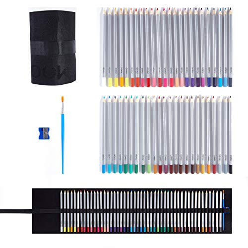 OOKU Artist Pro Watercolor Pencils Set 48 Colors / 51 Pc Full Kit | Wet Water Color Pencils Set / Dry Coloring Pencils Set for Adults, Kids | w/BONUS Wool Pencil Wrap, Watercolor Brush, Sharpener (Caran D Ache Museum Aquarelle Pencils Review)