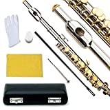 Glory Key of C Piccolo with Pro Case, Joint Grease, Cleaning Cloth and Rod, and Gloves, Silver/Gold keys ~ More COLORS Available ! CLICK on LISTING to SEE All Colors