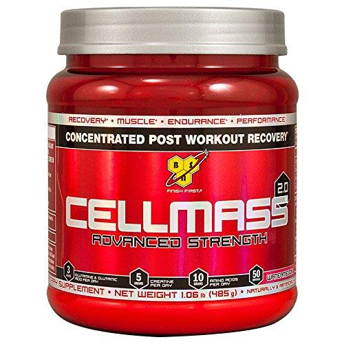BSN CellMass 2.0, Watermelon, 50 Servings (Best Workout For Mass)