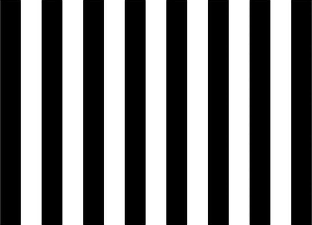 Laeacco 7x5ft Computer Printed Thin Vinyl Photography Backdrop Black and White Stripe theme Backdrop for Photos 2.2(w)x1.5(h)m Background Photo Studio Props
