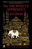 img - for The Architect's Apprentice: A Novel book / textbook / text book