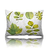 "Travel Pillow Watercolor Drawing Leaves Memory Foam Pillow 13""x18"""