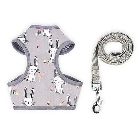 LCWYP Correa Collar Mascotas Encantadores Collares para Perros ...