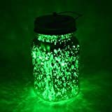 Fantado Wide Mouth Gold Mercury Glass Mason Jar Light w/Hanging Green Fairy LED Kit by PaperLanternStore