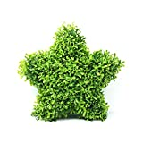 RUOPEI Artificial Hanging Topiary Star - 12.5 inch Artificial Boxwood Topiary Star Shape Hanging Plant with Chain for Home Indoor and Outdoor Decor,Christmas, Wedding and Party Decoration (Type 2)