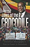 In the Jaws of the Crocodile: Emmerson