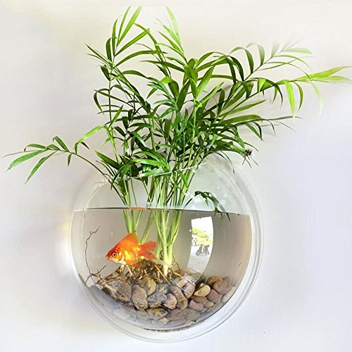 Mini Acrylic Round Wall Mount Fish Bowl Tank Flower Plant Vase Home Decoration ()
