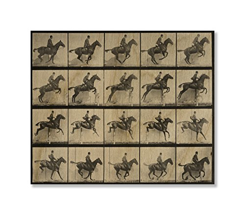 Gallery Direct 'Man and Horse Jumping a Fence' Print on Wood by Eadweard Muybridge, 29 by 26-Inch