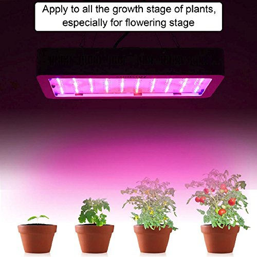 Full Spectrum Adjustable 300 W LED Plant Grow Light Lamp for Angiosperms Hydroponics Greenhouse US - Aviators Tumblr