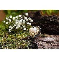 Anillo de gipsófila- Joya con flores secas naturales - Anillo ajustable flor de novia bohemio - Semiesfera de vidrio…