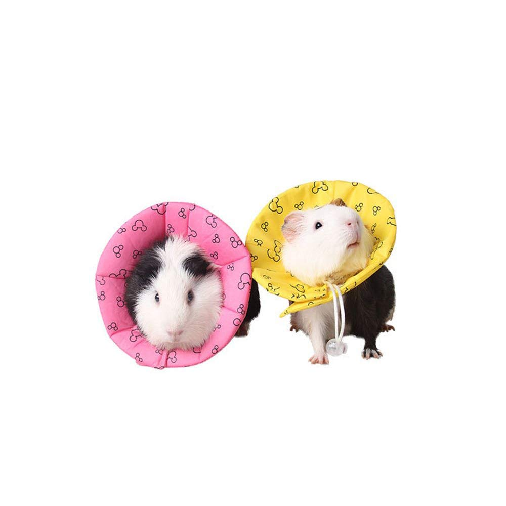Amakunft Recovery Pet Cone E-Collar, Adjustable Neck Cover Dog Cat Cone for Small Animal Hamster, Guinea Pig, Mice, Mouse, Kitten and Rabbit (Color Random) by Amakunft