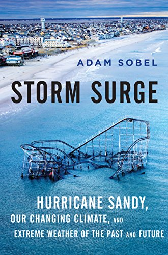 What do we need to do to protect ourselves and our cities from the planet's changing climate?Storm Surge: Hurricane Sandy, Our Changing Climate, and Extreme Weather of the Past and Future by Adam Sobel