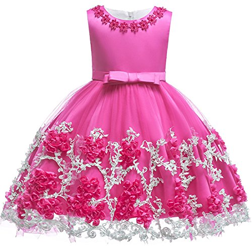 Bridesmaid Dresses for Little Girls 7-16 Wedding Christmas Party Pageant Flower Dress for Kids Summer Fall Winter Holiday Ball Gowns Sleeveless Knee Length Princess Girl Graduation Dress (Rose 110)]()