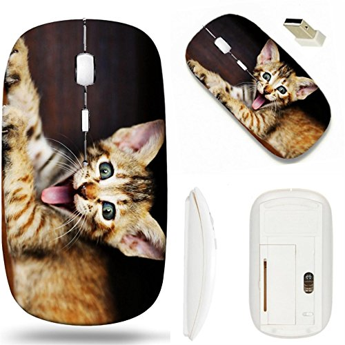 Cheeky Mouse - MSD Wireless Mouse White Base Travel 2.4G Wireless Mice with USB Receiver, Noiseless and Silent Click with 1000 DPI for notebook, pc, laptop, computer, mac book design 21616593 kitten with cheeky smil