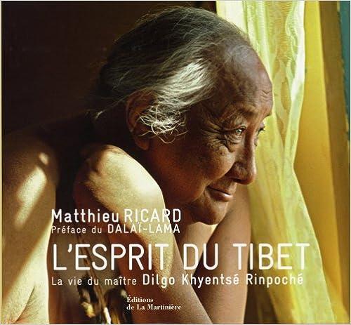 Télécharger en ligne L'Esprit du Tibet : La vie du maître Dilgo Khyentsé Rinpoché pdf ebook