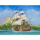 Model Kit: Pirate Ship: Black Swan