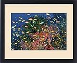 Framed Print of Indonesia, Papua, Fak Fak, Triton Bay. Colorful reef scenic