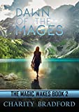 Dawn of the Mages (The Magic Wakes Book 2)
