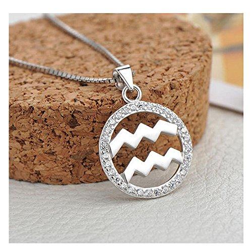 Yuriao Jewelry Elegant Fashion Love Diamond Accented Twelve Constellation Aquarius Pendant Necklace£¨Aquarius£