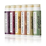 ArtNaturals Natural Lip Balm Beeswax - 6 Pack Assorted Flavors - 0.15 oz each -Chapstick for Dry, Chapped and Cracked lips - Lip Repair and Therapy with Aloe Vera, Coconut, Castor and Jojoba Oil