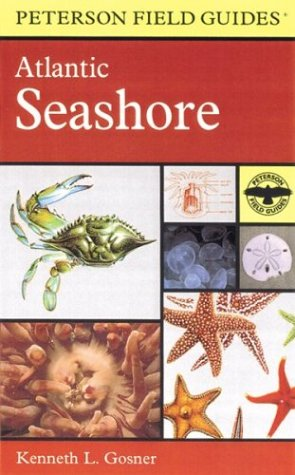 A Field Guide to the Atlantic Seashore: From the Bay of Fundy to Cape Hatteras (Peterson Field Guides(R)) - Book #24 of the Peterson Field Guides