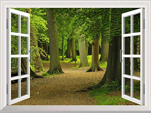 YPY 3D Wall Murals Removable Canvas Stickers Windows Style for Home Decoration (WS01, 48x36inch)